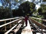 Pfeiffer Sunday Creek Bridge_2